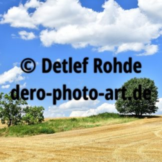 Landschaft bei Dahlen - DeRo Photo Art