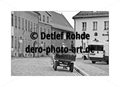 Mutzschen Kutsche Bauer - DeRo Photo Art